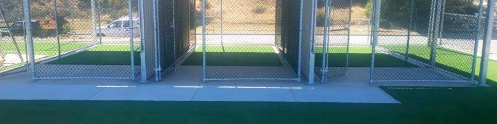 Kennels with Synthetic Lawn Installed
