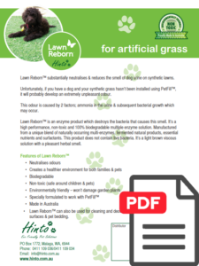 artificial grass lawn reborn flyer