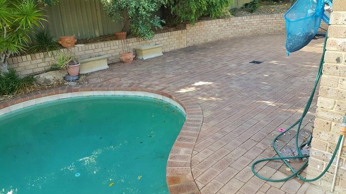 Swimming Pool Surrounds - Green Planet Grass