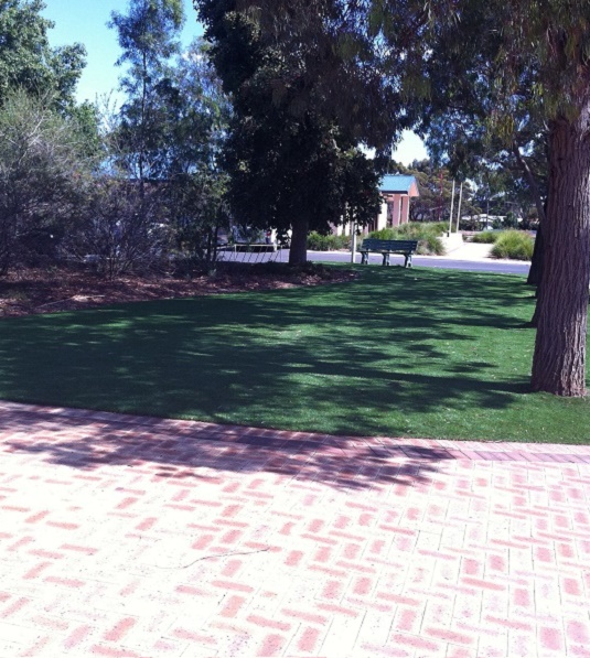 Artificial Lawn for Verges and Streetscapes - Green Planet Grass