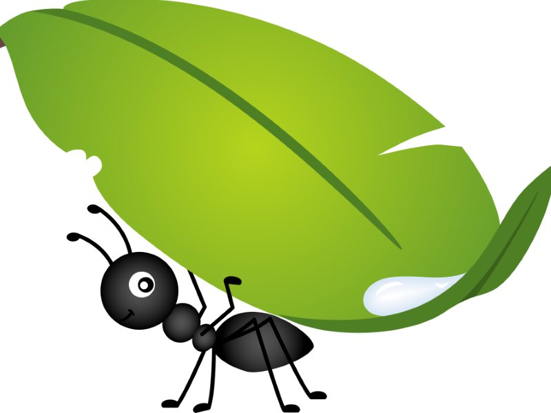 GPG BLOG Ants on Synthetic Lawn