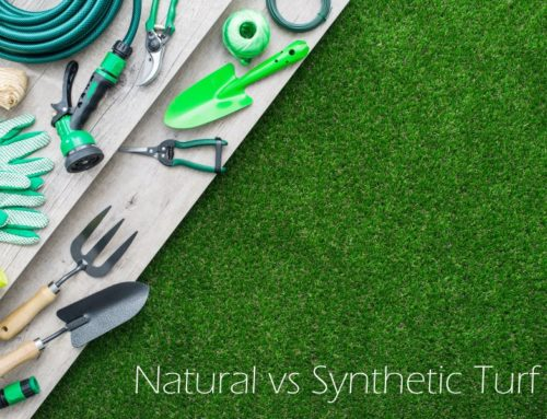 GPG Blog – Maintenance of Artificial Lawn