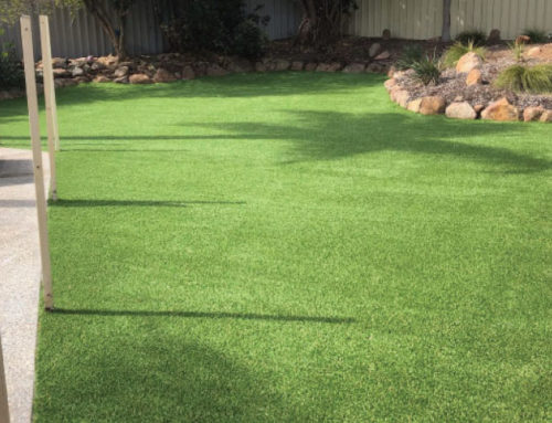 From Desolate Sand Patch to Backyard Oasis