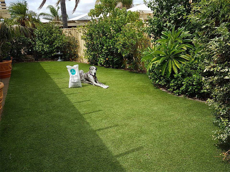 Lawn Reborn™ for Synthetic Lawn in Perth - Green Planet Grass