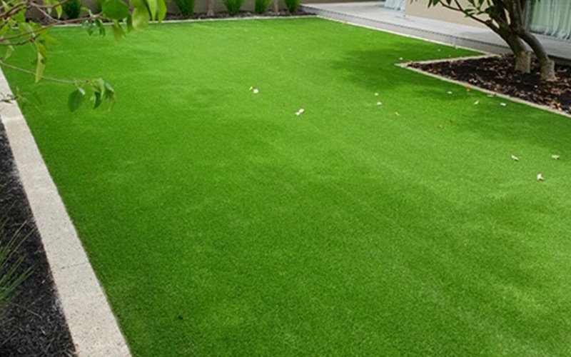 Landscaping Grass Products